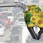biocarburanti 1